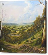 The Lost Sheep In The Scrub Acrylic Print