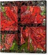 The Rhody 02 Acrylic Print