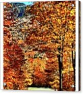 The Richness Of Autumn Treasures Acrylic Print