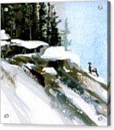 The Steep Climb Acrylic Print