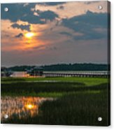 Thriving Beauty Of The Lowcountry Acrylic Print
