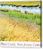 Tidal Creek Mud Flat At Low Tide Acrylic Print
