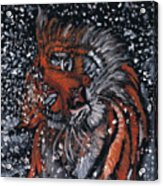 Tiger Bathing Acrylic Print