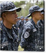 Tigres Commandos Stand In Formation Acrylic Print