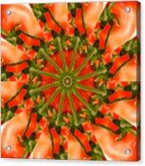 Tomato Kaleidoscope Acrylic Print