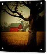 Tree And Barn Acrylic Print