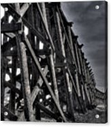 Tressel From The West Acrylic Print