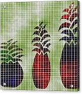 Tropical Fruit Acrylic Print