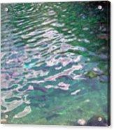 Trout Acrylic Print