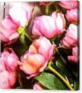 Tulips 3 Acrylic Print