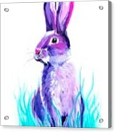 Turquoise And The Hare  Acrylic Print