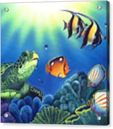 Turtle Dreams Acrylic Print