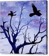 Twilight Flight Acrylic Print