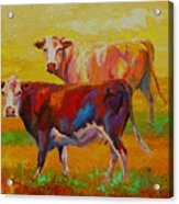 Two Cows Acrylic Print by Marion Rose