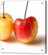 Two Rainier Cherries Acrylic Print by Blink Images