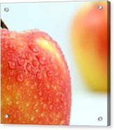Two Red Gala Apples Acrylic Print