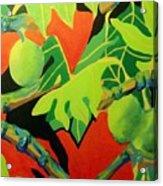 Ulu 2 Acrylic Print