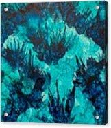 Under Water Acrylic Print