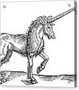 Unicorn, 1607 Acrylic Print