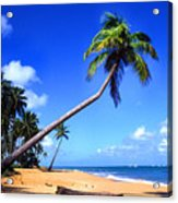 Vacia Talega Beach Acrylic Print