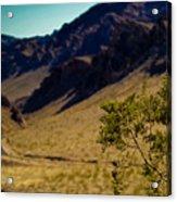 Valley Of Fire Nevada Acrylic Print
