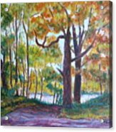 View From My Driveway Acrylic Print