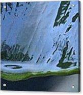 Water Drop Forming Acrylic Print