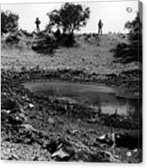 Water Hole Dead Cattle Cowboys  Drought Tohono O'odham Indian Reservation Near Sells Az 1969 Acrylic Print
