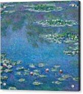 Water Lilies 1906 Acrylic Print
