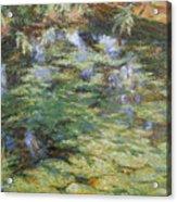 Water-lilies Acrylic Print