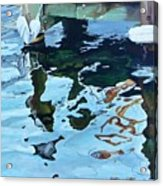 Water Reflections 1 Acrylic Print