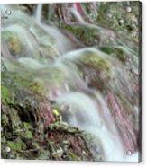 Water Spring Scene Acrylic Print