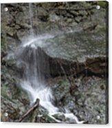 Waterfall Stream Acrylic Print