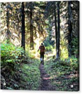 Waterton Valley Trail Detail - Glacier National Park Acrylic Print