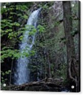 Westfield Falls Acrylic Print
