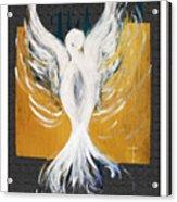 White Dove  Acrylic Print