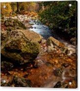 Wicklow Stream Acrylic Print