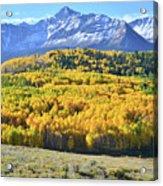 Wilson Mesa And Mt. Wilson Acrylic Print