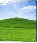 Windows Xp Acrylic Print