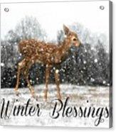 Winter Blessings Acrylic Print