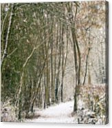 Winter Journey Acrylic Print by Andy Smy