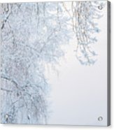 Winter Landscape With Snow-covered Trees Acrylic Print