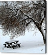 Winter Picnic Acrylic Print