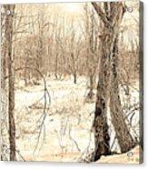Winter Scene, Montgomery County, Pennsylvania Acrylic Print