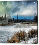 Winters Marsh Acrylic Print