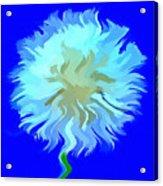 Wish Of A Lifetime Acrylic Print