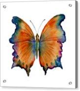1 Wizard Butterfly Acrylic Print