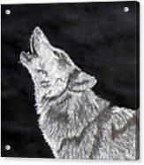 Wolf Howl Acrylic Print