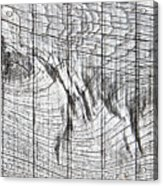 Wood Detail Acrylic Print
