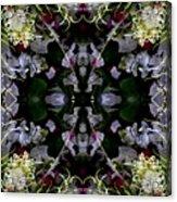 Worm Hole Mandala Acrylic Print
